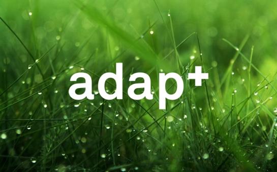 image_dew-grass