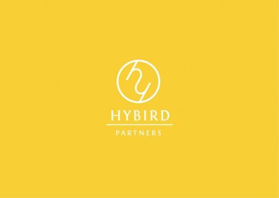 prezentacja-HYBRID2-1024x729