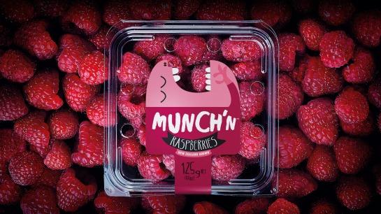 freshmax-raspberries-overhead-web