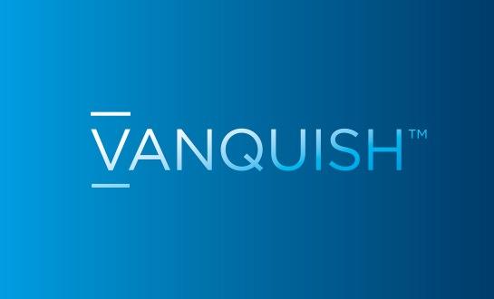 vanquish-log[1]