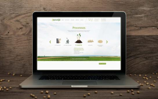branding-design-website-03
